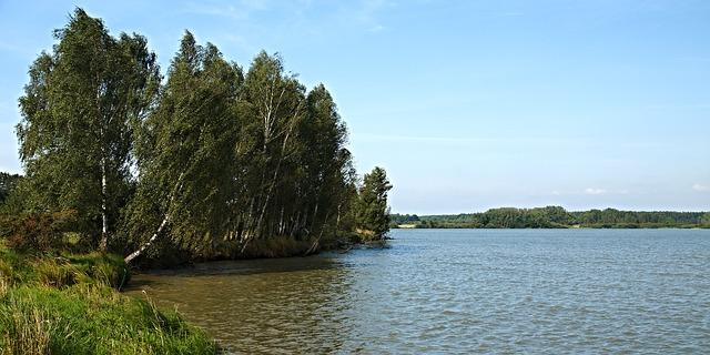 rybník u Třeboně
